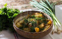 Новые картошки с свежими чесноком и укропом Стоковое фото RF
