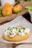 Новые картошки с творогом весны Стоковое фото RF