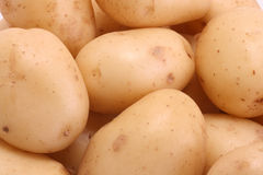 новые картошки Стоковое Изображение RF