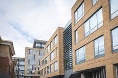 Новые офисы строения Стоковая Фотография RF