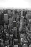 новые таксомоторы желтый york Стоковое Изображение RF