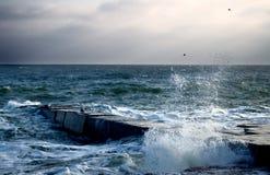 новый год моря Стоковые Фотографии RF