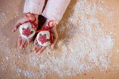 Новый Год предпосылки красного шарфа девушки праздников рождества зимы усмехаясь белый Стоковое Фото