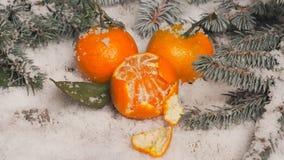 Новый Год предпосылки tangerines, снег, ель на деревянной предпосылке Стоковые Фотографии RF