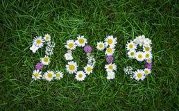 Новый Год 2019 сделал из цветков сада на траве стоковое фото