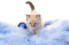 Новый Год украшения шарика голубое Стоковые Фотографии RF