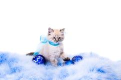 Новый Год украшения шарика голубое Стоковые Фото