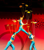 Новый Год 2011 китайца Стоковое Изображение RF