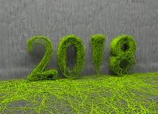 Новый Год 2018 Стоковая Фотография RF