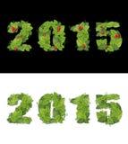 Новый Год 2015 выровнян с зелеными листьями изолировано Стоковое Фото