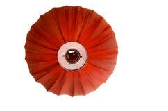 Новый Год красной китайской лампы inchinese Стоковая Фотография RF