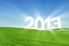 Новый Год 2013 Стоковая Фотография