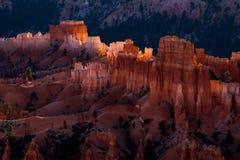 Новый день рассветая на каньоне Bryce Стоковые Фотографии RF