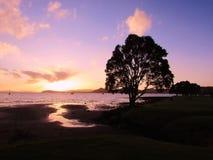 новый заход солнца zealand Стоковая Фотография