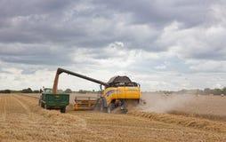 Новый зернокомбайн Голландии на работе Стоковое фото RF