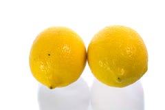 Новый лимон Стоковые Изображения RF