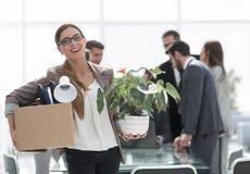 Новый работник компании на предпосылке офиса Стоковые Фото