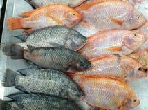 Новый рынок еды ингридиентов Стоковое Фото