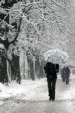 новый снежок 3 Стоковое Изображение