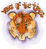новый тигр Стоковая Фотография