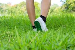 Нога в тапке с шагом на злаковик переднего плана Стоковое Изображение RF