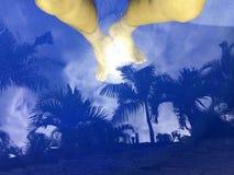 Нога в темно-синем бассейне стоковые фотографии rf