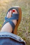 Нога женщины стоковая фотография rf