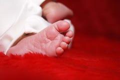 нога младенца немногая Стоковые Изображения RF