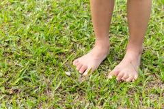 Нога младенца шагая на траву стоковое изображение