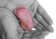 нога младенца Стоковые Фотографии RF