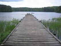 нога моста старая Стоковая Фотография