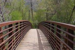 нога моста Стоковые Фотографии RF