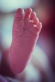 Нога младенца новорожденного азиатская Стоковое Фото