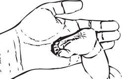 Нога младенца иллюстрация штока