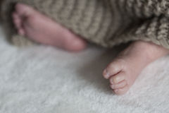 нога младенца newborn Стоковое фото RF
