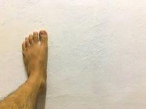 Нога на белой предпосылке Стоковое Изображение RF