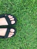 Нога на зеленой траве Стоковая Фотография