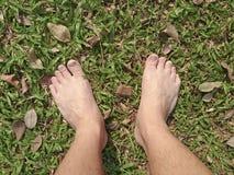 Нога над зеленой травой Стоковые Изображения RF