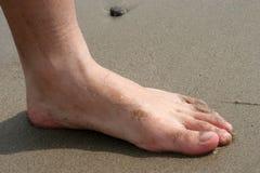 нога песочная Стоковые Изображения