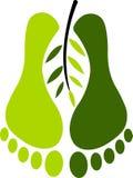 нога экологичности Стоковые Фото