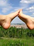 нога Стоковое Изображение RF
