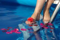 нога Стоковые Фотографии RF
