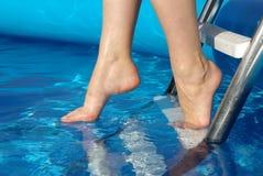 нога Стоковые Изображения RF