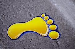 нога Стоковые Изображения