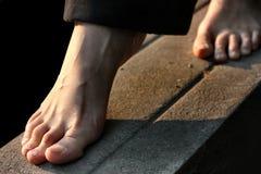 нога Стоковая Фотография RF