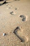 нога print1 Стоковое Фото