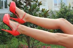 Ноги дам в красивых ботинках. Стоковое Изображение