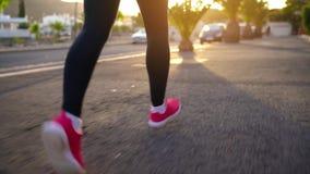 Ноги бегов женщины вниз по улице среди пальм на заходе солнца, заднем взгляде Здоровый активный образ жизни акции видеоматериалы