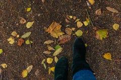 Ноги в зеленых ботинках стоковые фотографии rf