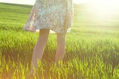 Ноги в поле в утре стоковое изображение rf